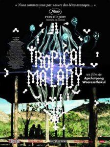 Affiche du film Tropical Malady