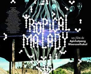 Affiche du film Tropical Malady